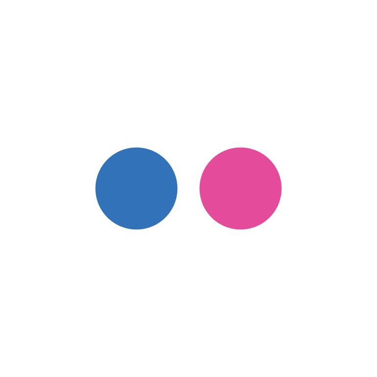 Flat social icon circle flickr2
